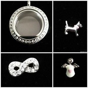 Origami Owl Pendent & Charms